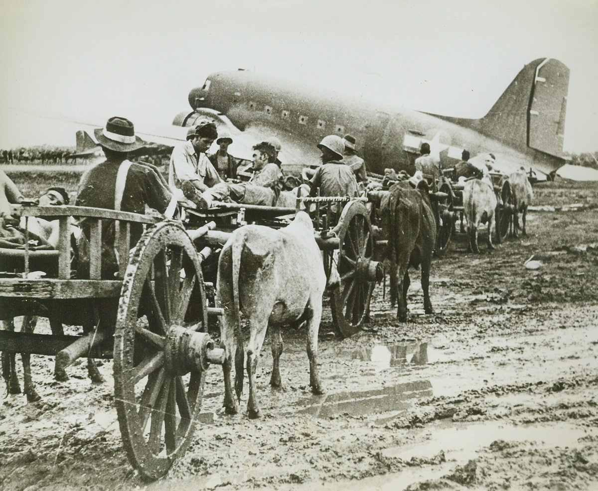 Cart Wounded from Burma Front, 8/19/1944. BURMA – On ox-drawn carts, wounded men arrive at the airport at Myitkyina, Burma, where they await transportation by hospital plane. Men were brought from the front five and one-half miles away over terrain as sodden as this air strip. Credit: U.S. Army photo from ACME;